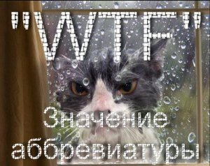 Что такое WTF,ВТФ?