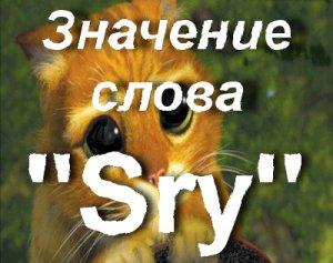 Что значит Sry?