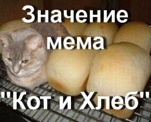 Что значит Кот и Хлеб мем?