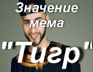 Мемы про тигров откуда?