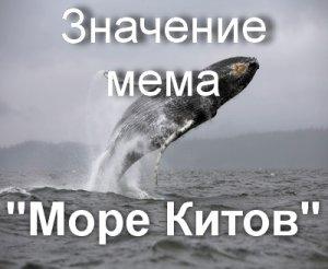 Что значит море китов f57