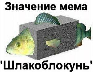 Что значит Шлакоблокунь мем?