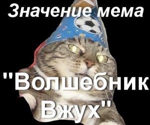 Кот волшебник Вжух мем