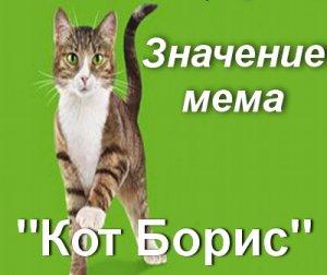 Что значит Кот Борис мем?