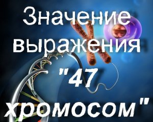 что значит 47 хромосом?