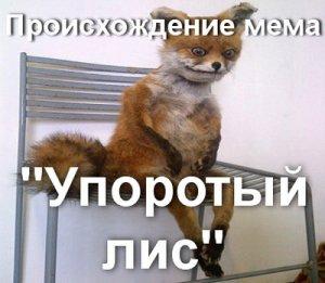 Мемы Упоротый Лис