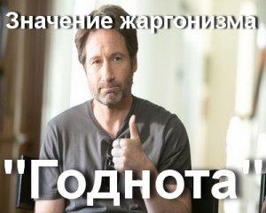 что значит Годнота?
