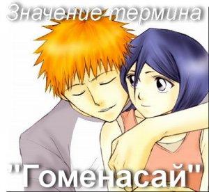 Гоменасай, Gomenasai - что значит?