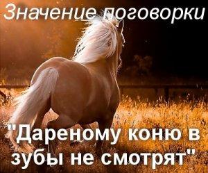 Дареному коню в зубы не смотрят - значение?