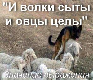 И волки сыты и овцы целы - значение?