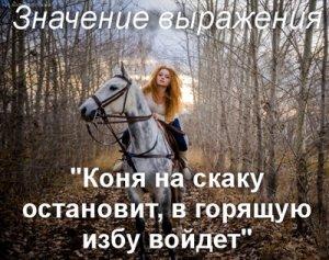 Коня на скаку остановит, в горящую избу войдет - откуда фраза?