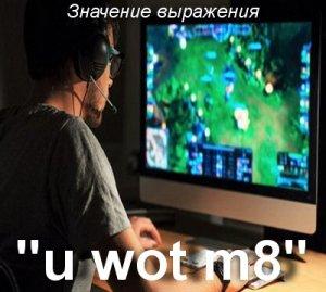 что значит u wot m8?