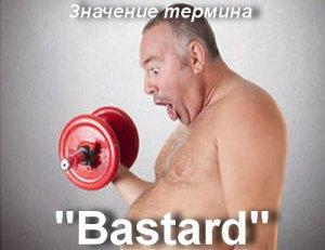 что значит Bastard перевод?