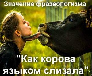 Как корова языком слизала - значение фразеологизма?