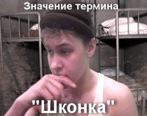 что значит Шконка?