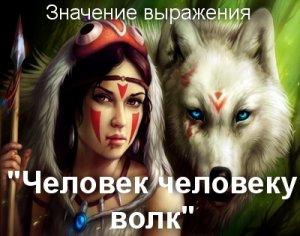 Человек человеку волк - что значит?