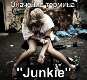 что значит Junkie перевод?