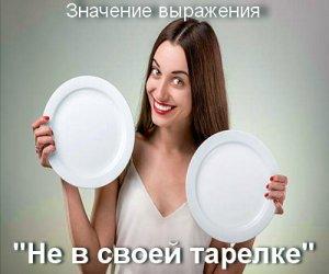 Не в своей тарелке - значение