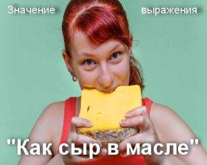 Как сыр в масле кататься - значение