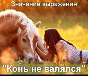 Конь не валялся - значение