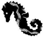 кельтский зодиак морской конёк.