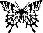 кельтский зодиак бабочка.