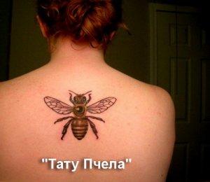 Тату Пчела - значение
