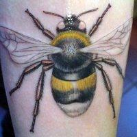 что значит Тату Пчела?