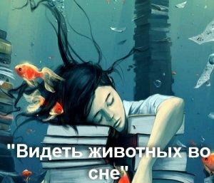 Животные в снах - значение