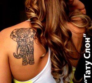 Тату Слон - значение