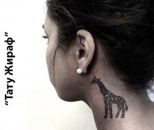 Тату Жираф - значение