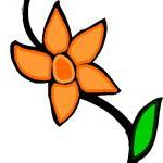 цвет оранжевый значение.