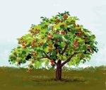 Яблоня у славян.
