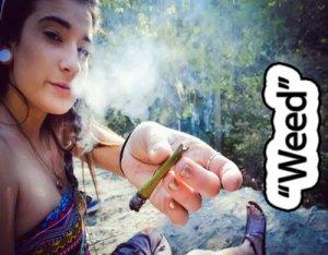 Weed - перевод