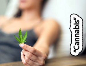 Cannabis - перевод