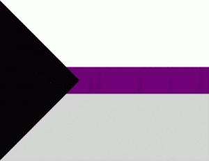 Демисексуальный флаг.