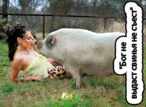 Бог не выдаст, свинья не съест - что значит?
