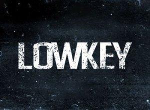 LowKey что значит?