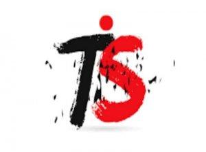 TS - что значит?