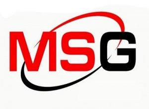 MSG - перевод