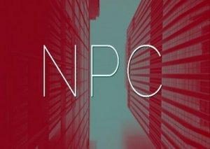 NPC - что значит?