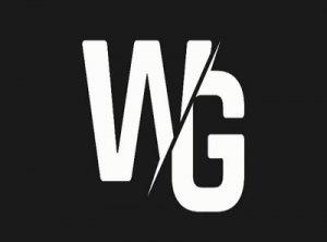 WG - что значит?