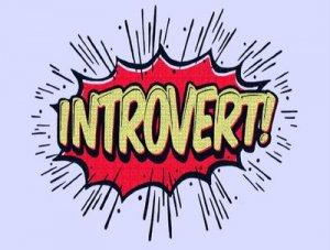 Introvert - перевод?