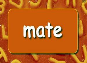 Mate - перевод