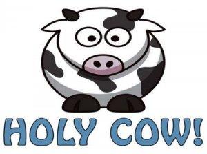 Holy cow - перевод?