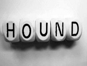 Hound - перевод?