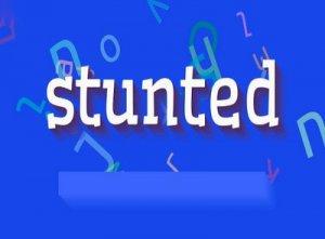 Stunted - перевод?