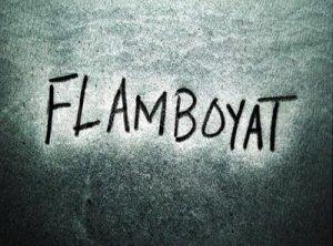 Flamboyant - перевод?