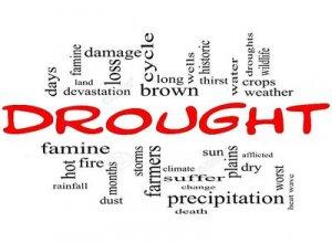 Drought - перевод?