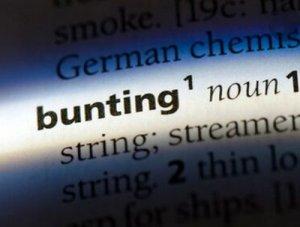 Bunting - перевод?